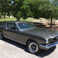 Fair Oaks Mustang